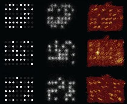 下一代的信息存储方式:DNA